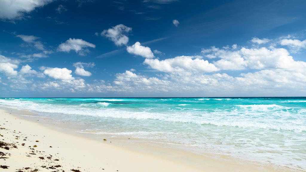immagine per Paradise Beach