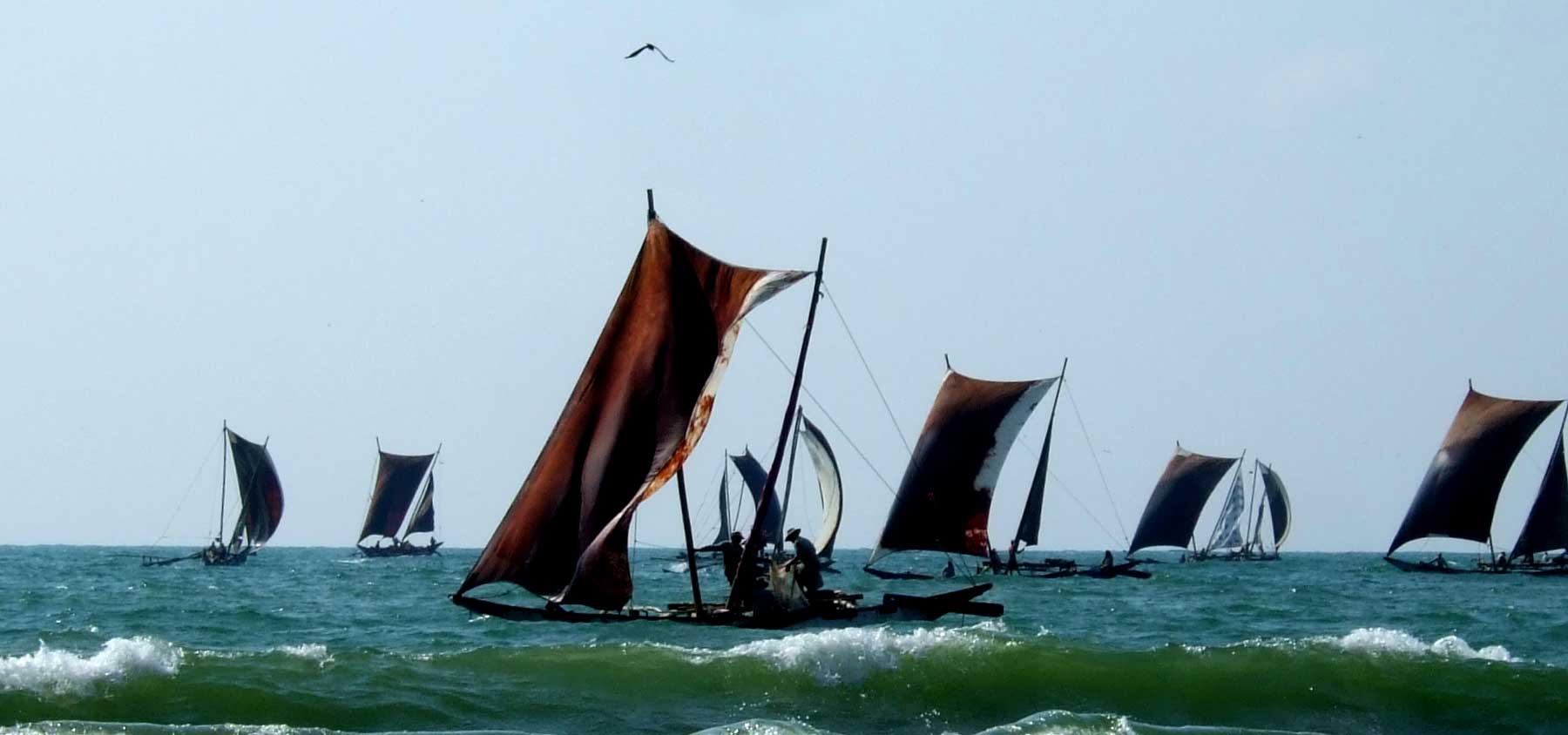 immagine per 3 – Sri Lanka – Tour Sri Lanka Express