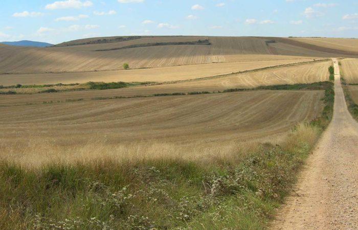 immagine per cammino di santiago da madrid