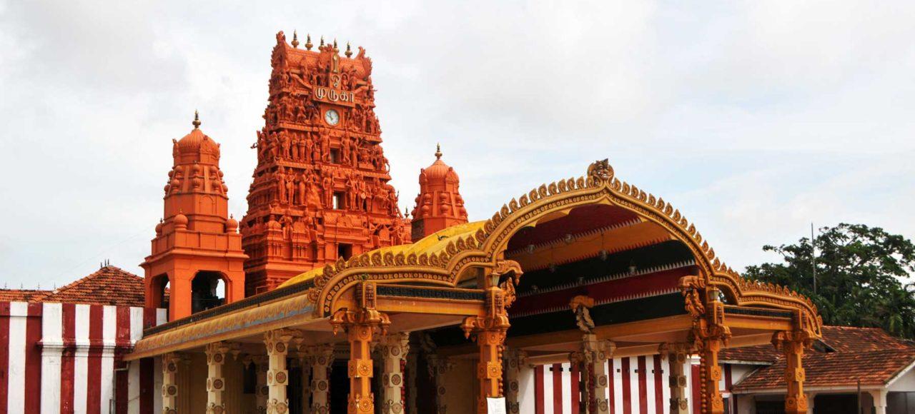 immagine per 5 – Sri Lanka – Tour Gli Splendori dello Sri Lanka