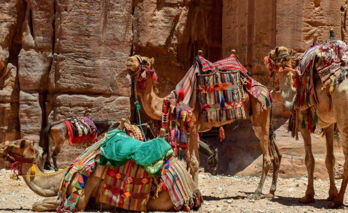 immagine per Tour Giordania - La Strada dei re